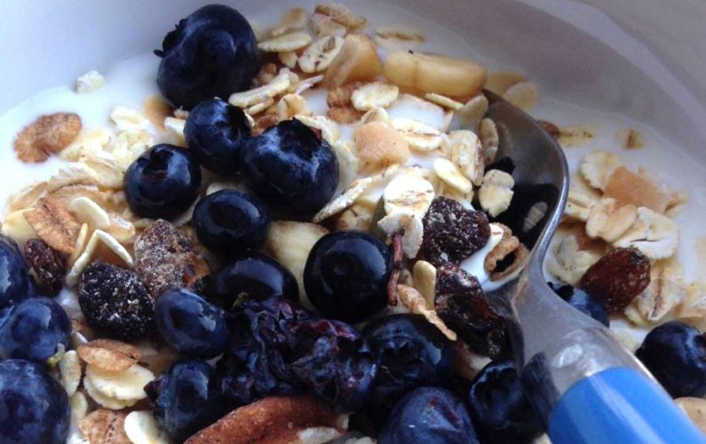 BlueberryBreakfast